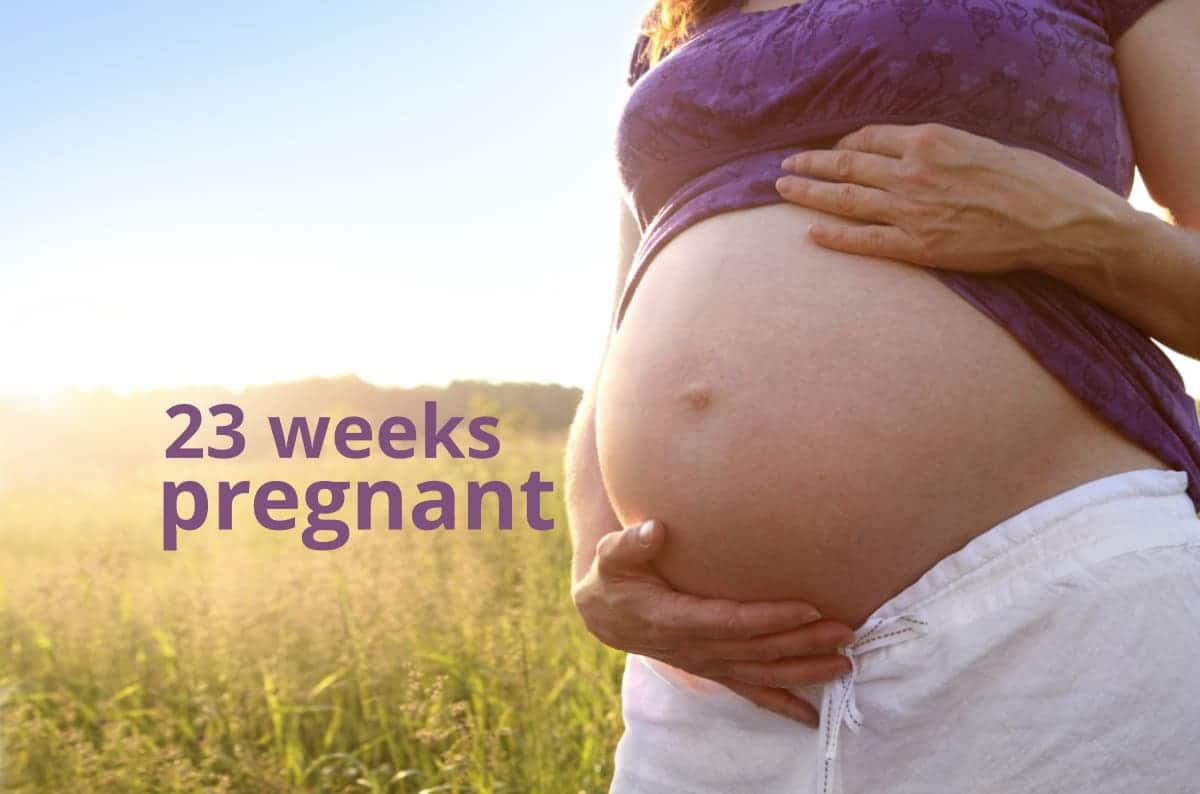 23 Weeks Pregnant - Your Baby & You at 23 Weeks - What to Expect