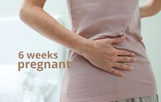 6 weeks pregnant Archives - ThePLab