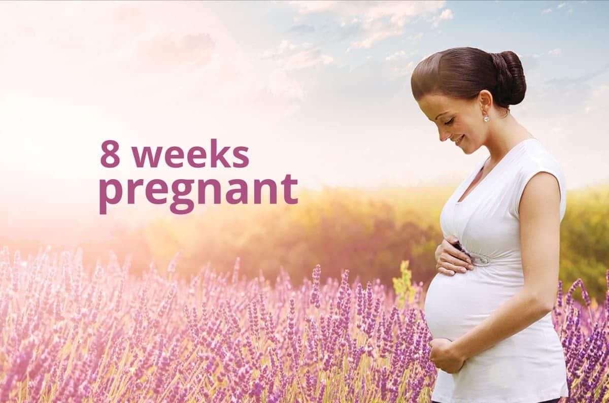 8 weeks pregnant