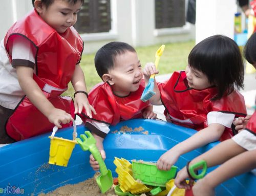 5 factors influencing a child's social development in early childhood!